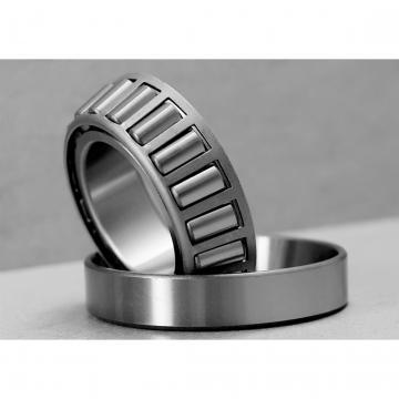 Bearing Supplier 6305 Ceramic Bearing C5