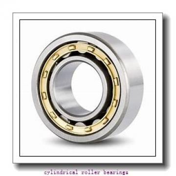 17 mm x 47 mm x 14 mm  FAG NJ303-E-TVP2  Cylindrical Roller Bearings