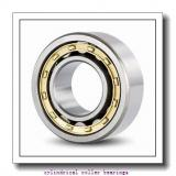 FAG N3060-M1-R180-260  Cylindrical Roller Bearings