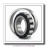 25 mm x 62 mm x 17 mm  FAG N305-E-TVP2  Cylindrical Roller Bearings