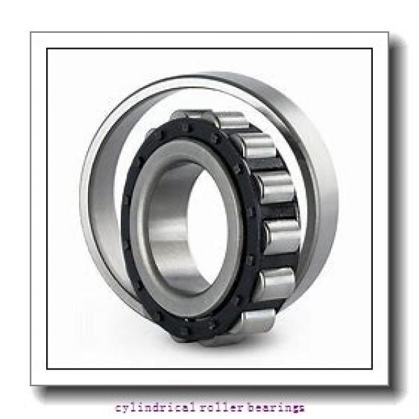 5.512 Inch   140 Millimeter x 8.268 Inch   210 Millimeter x 3.346 Inch   85 Millimeter  INA SL06028-E-C3  Cylindrical Roller Bearings #2 image
